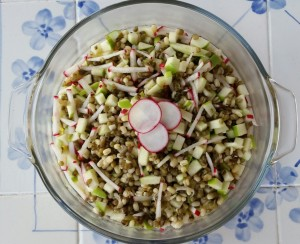 Mung Bean and Apple Salad
