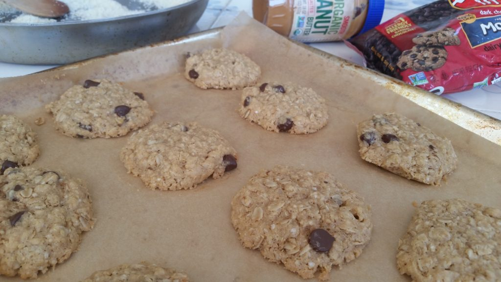 Salty Oat Cookies